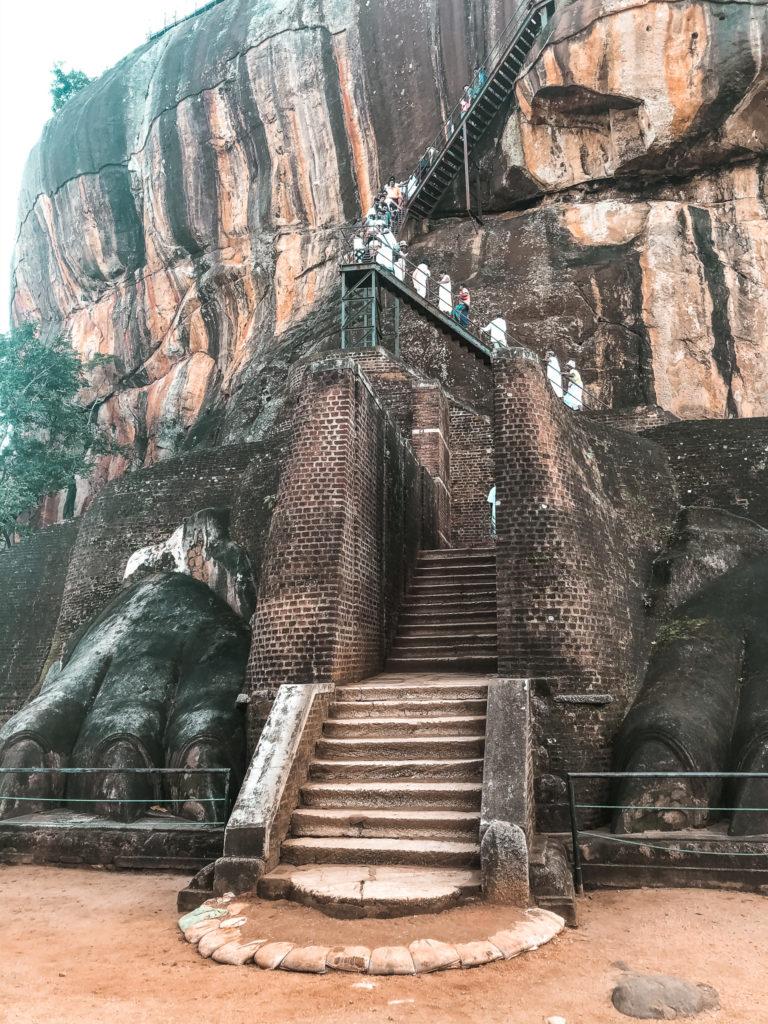 lwie łapy w Sigiriya