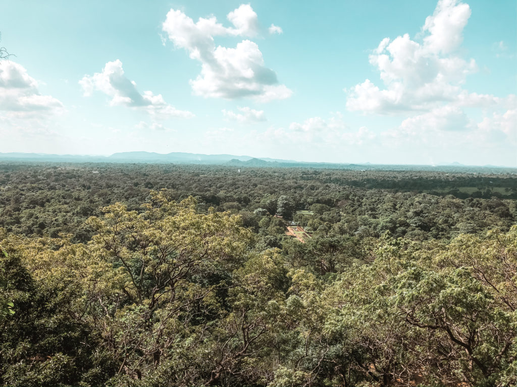 Widok z Lion Rock