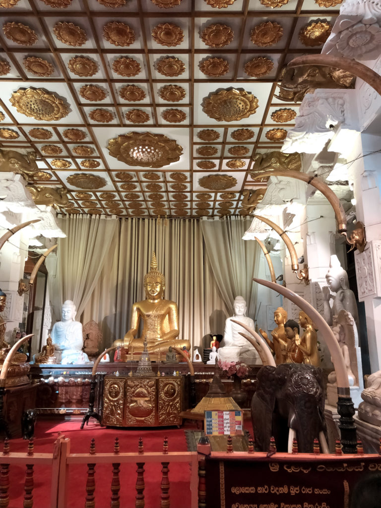 złoty budda w świątyni zęba
