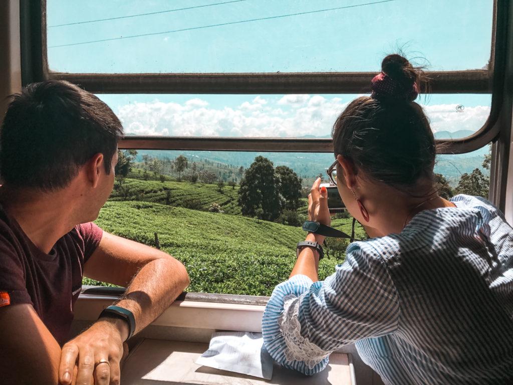 plantacja herbaty z pociągu