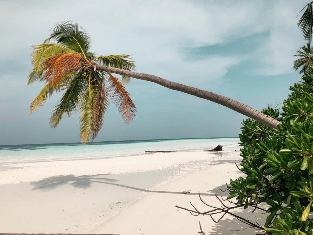 wakacje na Malediwach, plaża