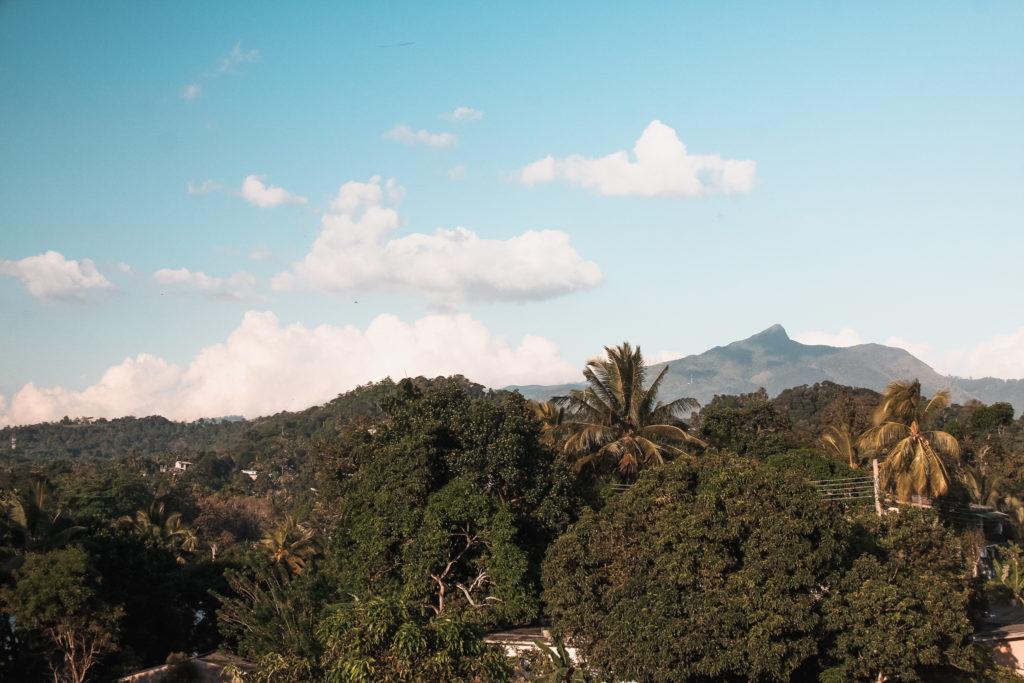 widok na dzungle z hotelu w kandy