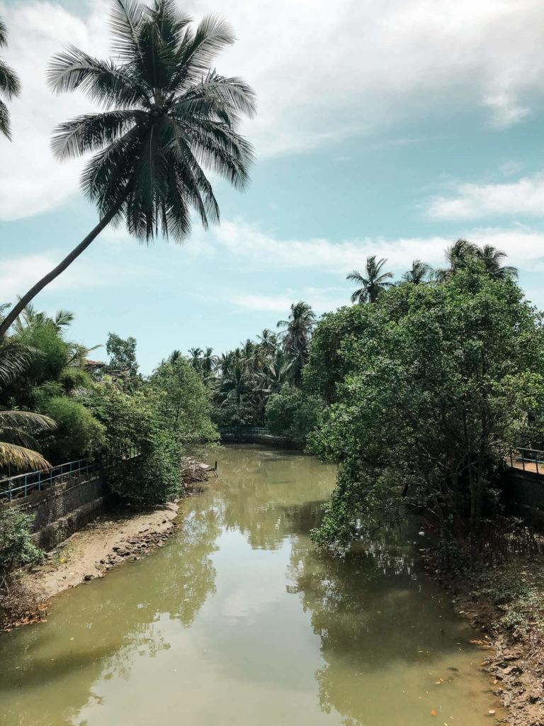 rzeka w tangalle
