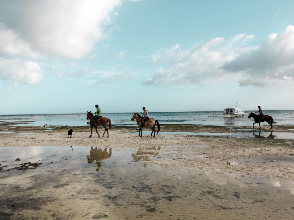 Danao Beach rajska plaża konie