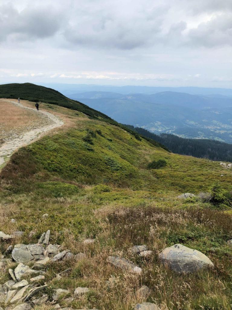 Babia Góra widok z przełęczy Brona
