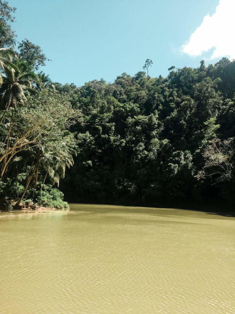 rzeka Loboc