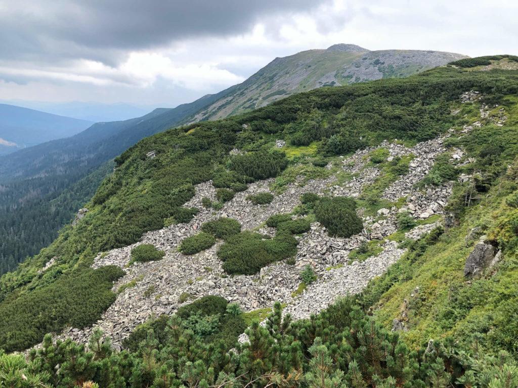 panorama przełęcz Brona