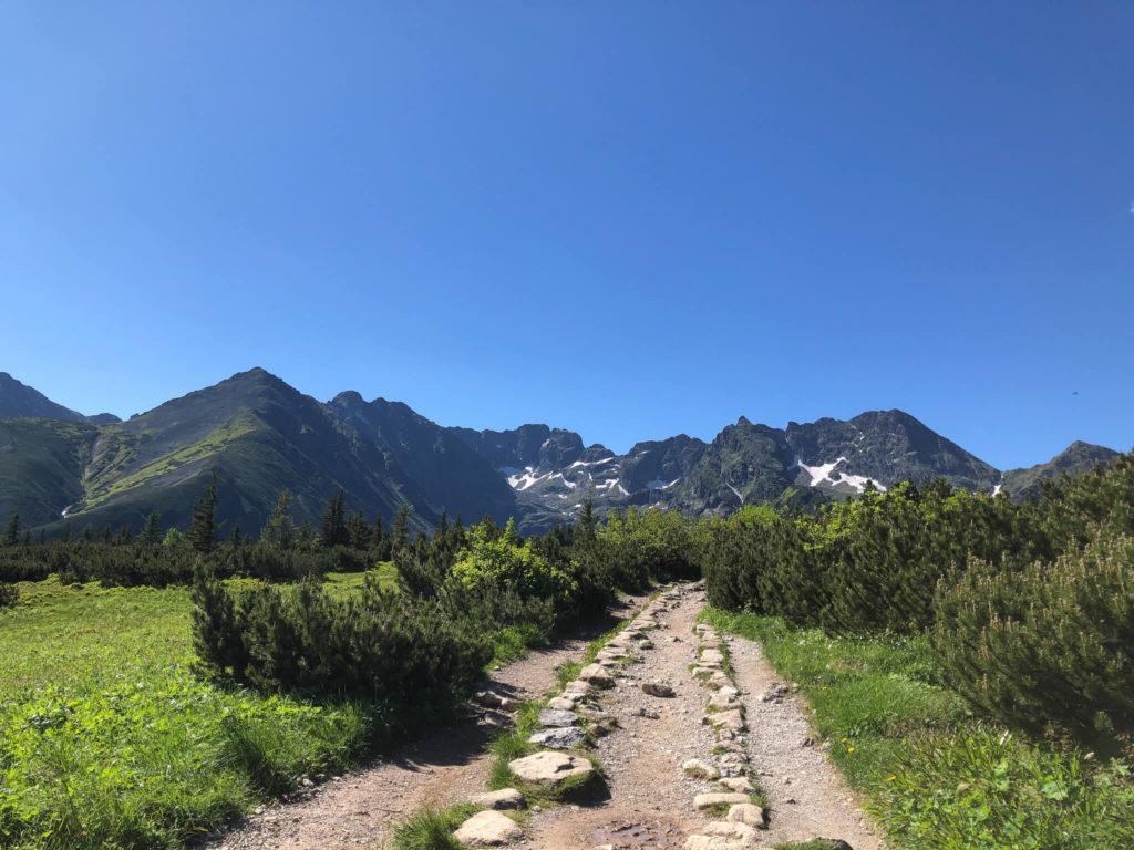 szlak na hale gąsienicową, widok na Mały Kościelec