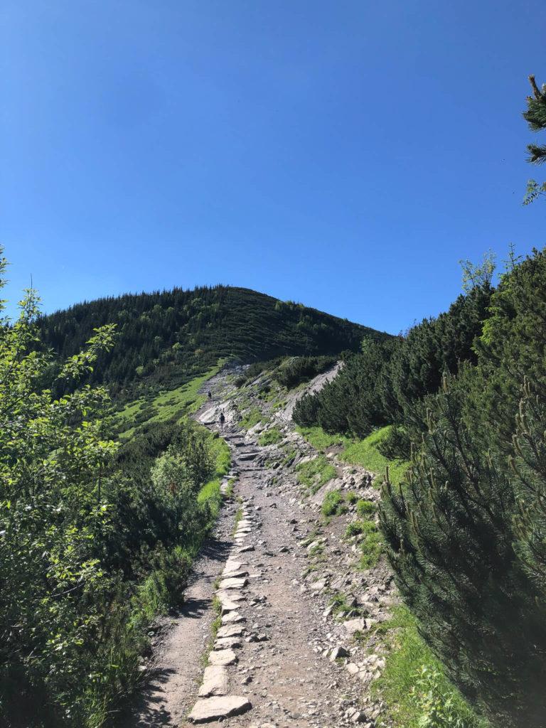 szlak przez Boczań