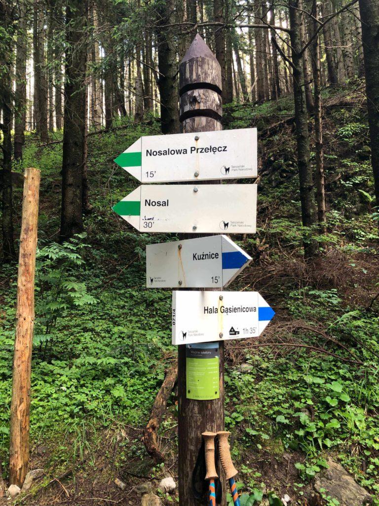 szlak na Nosal oraz szlak na Halę gąsienicową
